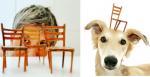 Damaris beim Miniatur-Modellbau und ihr Hund Morti