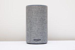 Amazon Alexa in Grau